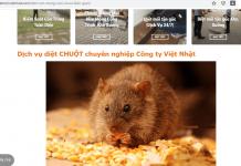 dịch vụ diệt chuột sài gòn