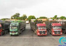 Chành xe chuyển hàng tại Tp HCM