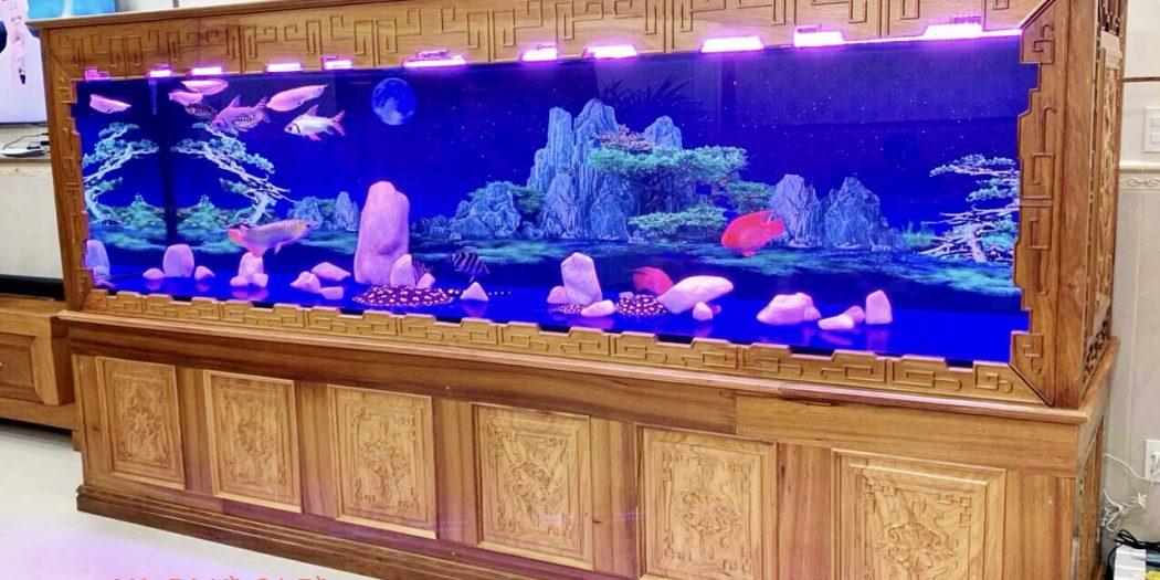 Hoàng Hải Aquarium